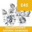 Understanding Natural Diamonds Course